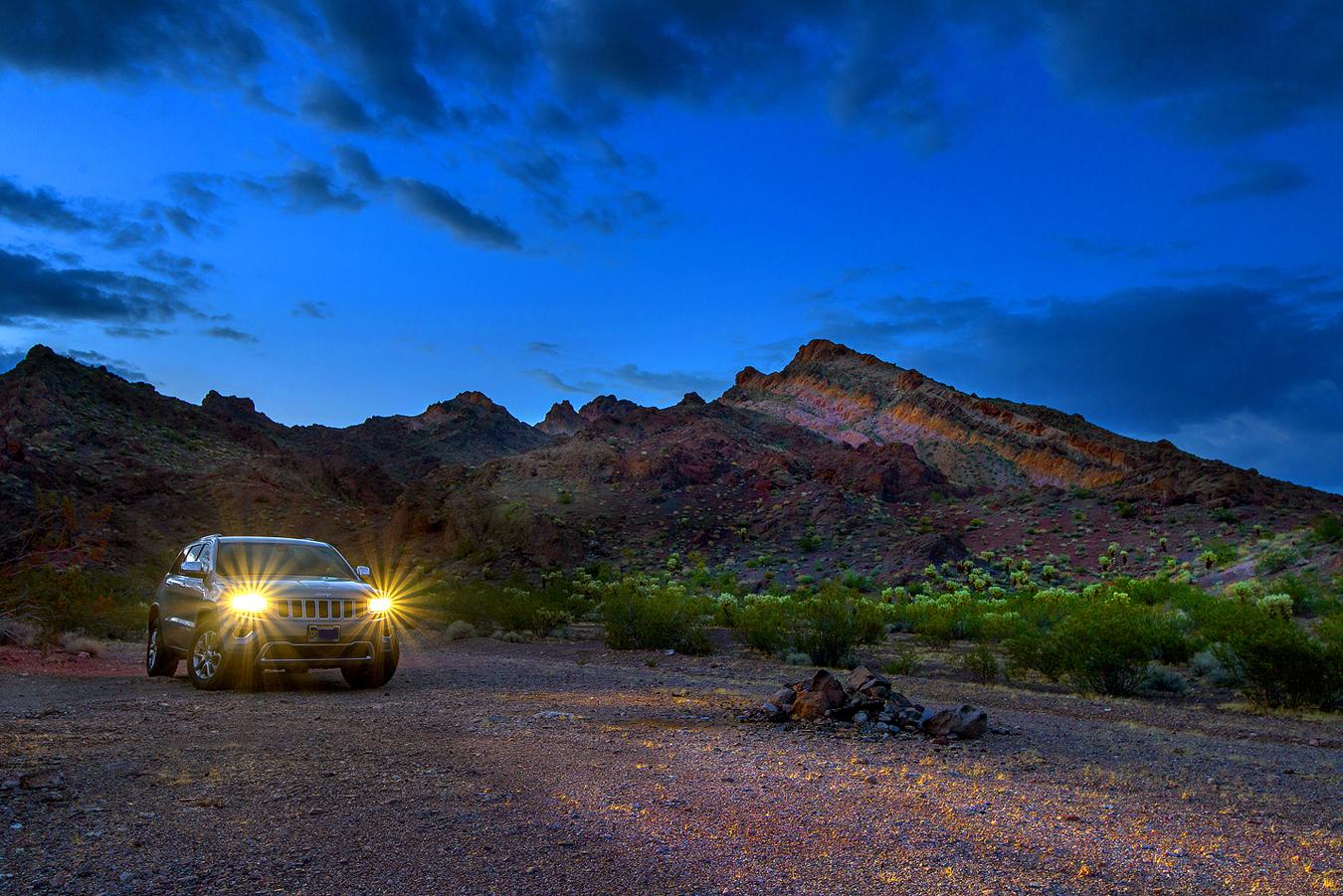 선인장과-jeep.jpg